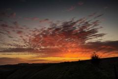 Westbury Sunset © Austen O'Hanlon 2021